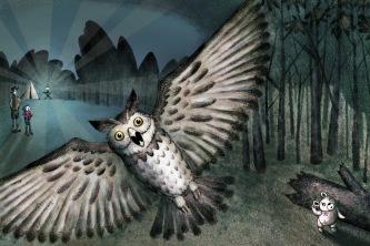 Owl (Molly Ruttan)