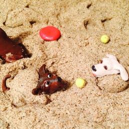 Gall Dog Beach3 (1)