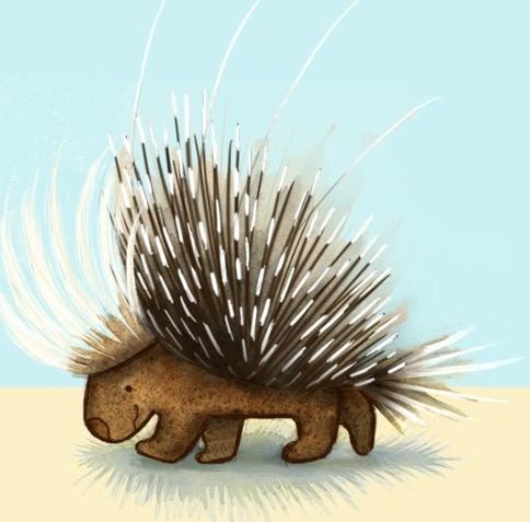 porcupine_ggeser